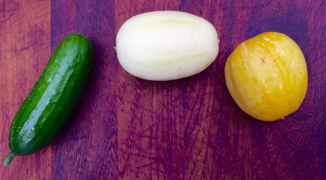 Why smaller cucumbers make so much sense